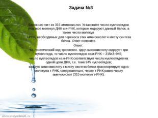 Задача №3  Белок состоит из 315 аминокислот. Установите число нуклеотидов уч