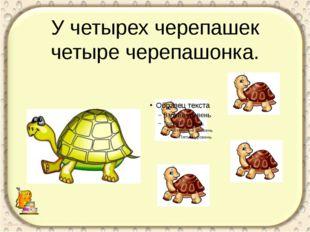 У четырех черепашек четыре черепашонка. Скороговорка для укрепления мышц рече