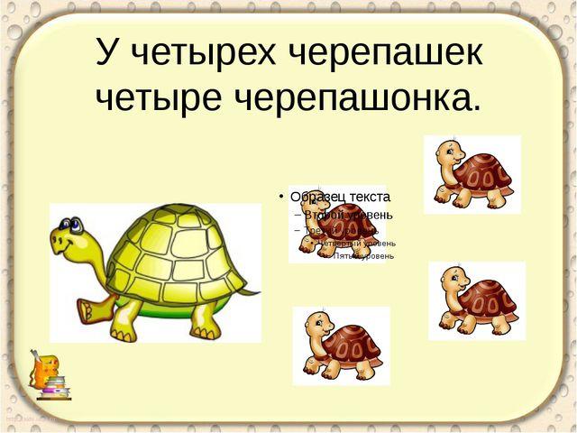 У четырех черепашек четыре черепашонка. Скороговорка для укрепления мышц рече...