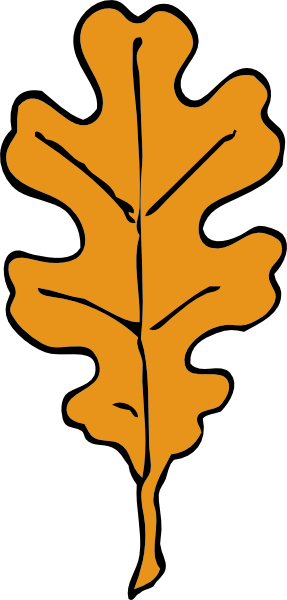 http://www.wordassociations.ru/image/600x/svg_to_png/johnny_automatic_oak_leaf.png