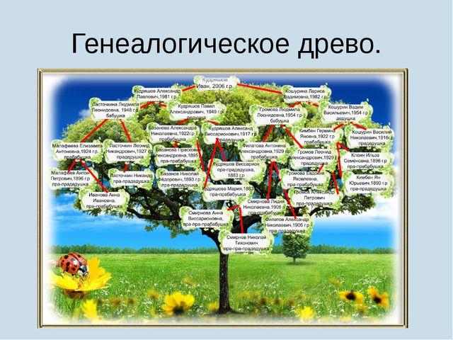 Генеалогическое древо.