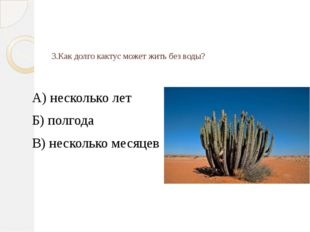 3.Как долго кактус может жить без воды? А) несколько лет Б) полгода В) нескол