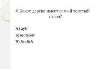 6.Какое дерево имеет самый толстый ствол? А) дуб Б) кипарис В) баобаб