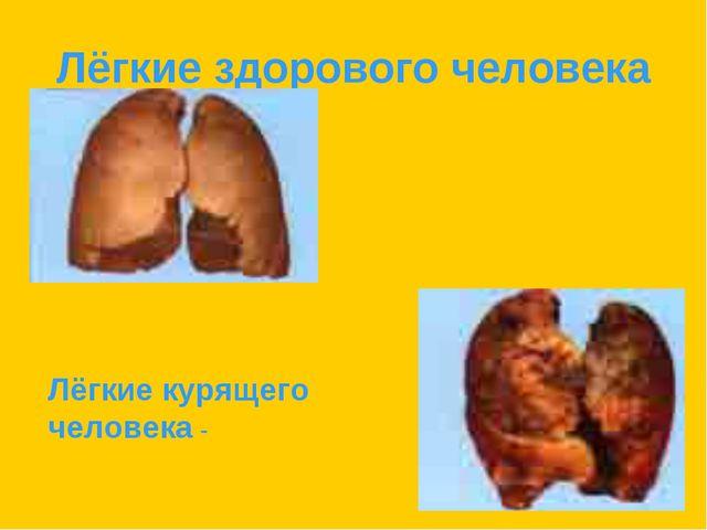 Лёгкие здорового человека Лёгкие курящего человека -