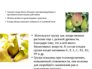 Свежие плоды яблок обладают противомикробным и противовоспалительным действи