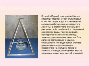 В своей «Первой практической книге пирамид» Норман Старк опубликовал отчет Ин