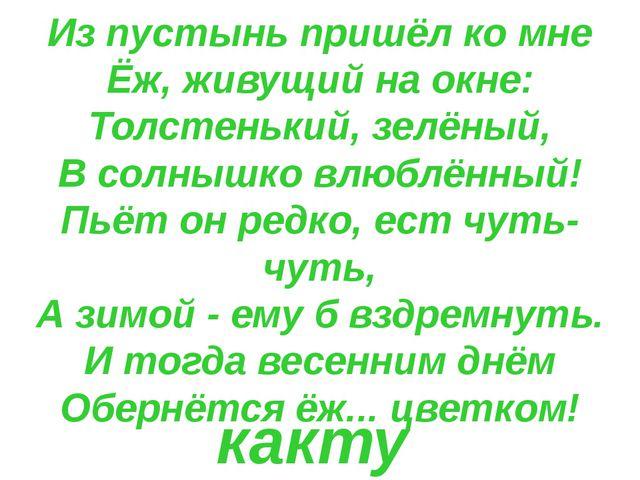 Из пустынь пришёл ко мне Ёж, живущий на окне: Толстенький, зелёный, В солнышк...