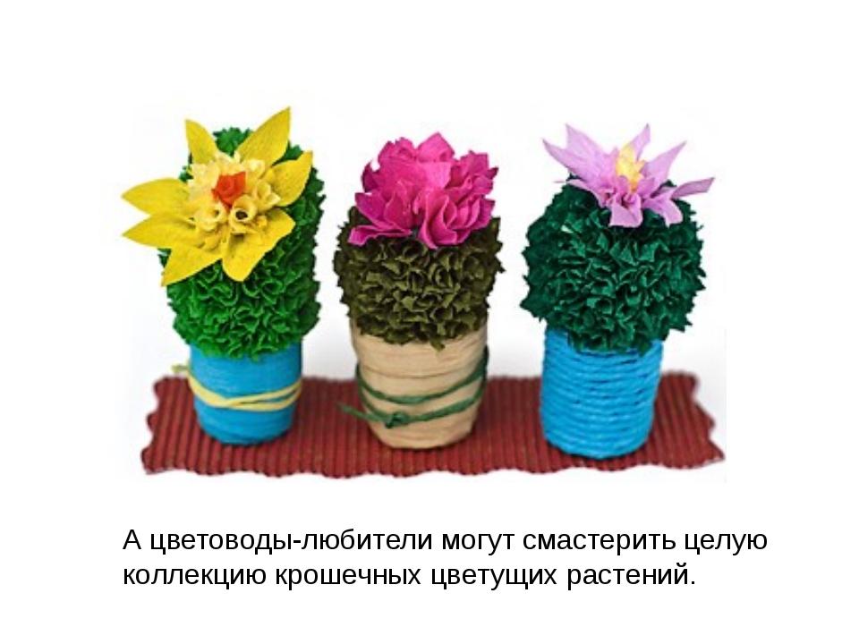 А цветоводы-любители могут смастерить целую коллекцию крошечных цветущих раст...