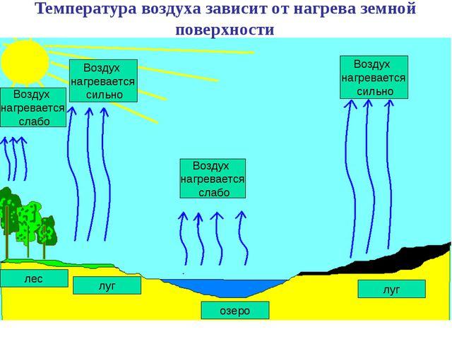 лес луг Воздух нагревается слабо Воздух нагревается сильно озеро луг Воздух н...