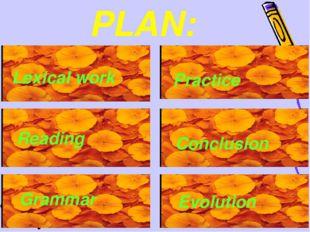 PLAN: Lexical work Reading Grammar Practice Conclusion Evolution