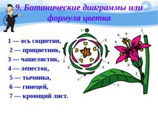 9. Ботанические диаграммы или формула цветка 1— ось соцветия, 2— прицветник