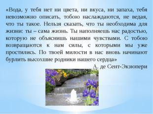 «Вода, у тебя нет ни цвета, ни вкуса, ни запаха, тебя невозможно описать, тоб