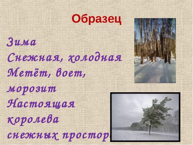 Образец Зима Снежная, холодная Метёт, воет, морозит Настоящая королева снежны...