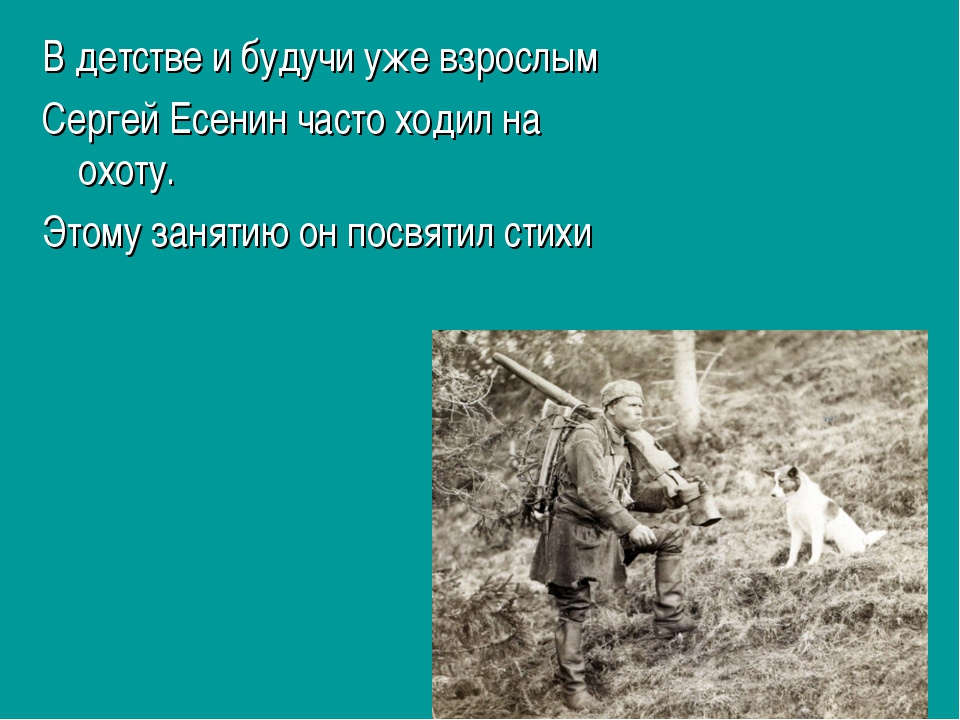 В детстве и будучи уже взрослым Сергей Есенин часто ходил на охоту. Этому зан...