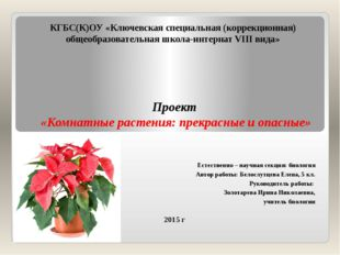 КГБС(К)ОУ «Ключевская специальная (коррекционная) общеобразовательная школа-и