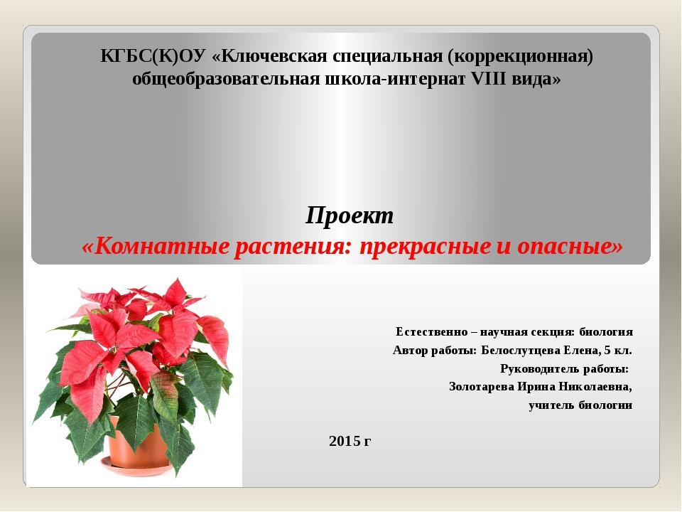 КГБС(К)ОУ «Ключевская специальная (коррекционная) общеобразовательная школа-и...
