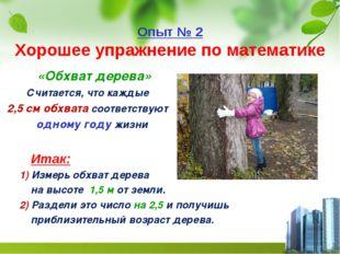 Опыт № 2 Хорошее упражнение по математике «Обхват дерева» Считается, что кажд