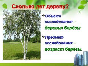 Сколько лет дереву? Объект исследования – деревья берёзы Предмет исследовани