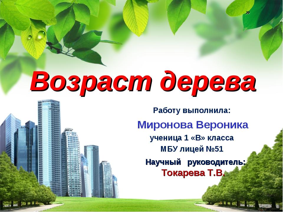 Возраст дерева Работу выполнила: Миронова Вероника ученица 1 «В» класса МБУ л...