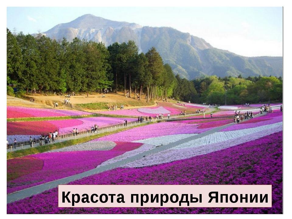 Красота природы Японии