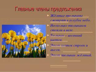 Главные члены предложения Жёлтые тюльпаны смотрят в голубое небо. Несколько т