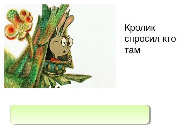 """Кролик спросил кто там Кролик спросил: """"Кто там?"""""""