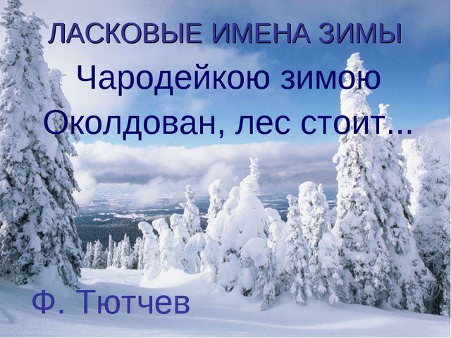 ЛАСКОВЫЕ ИМЕНА ЗИМЫ Чародейкою зимою Околдован, лес стоит... Ф. Тютчев