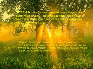 ЛИТОТА - противоположный гиперболе троп, заключающийся в преуменьшении призна