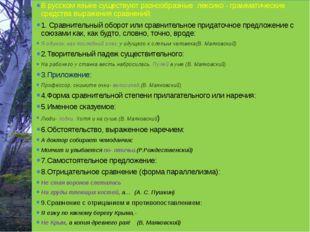 В русском языке существуют разнообразные лексико - грамматические средства вы