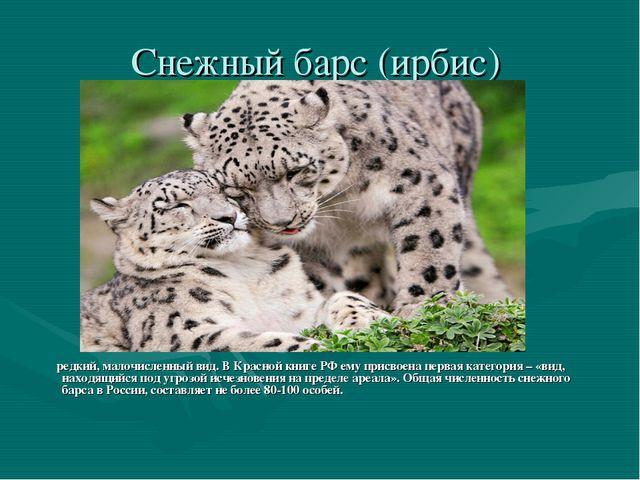 Cнежный барс (ирбис) редкий, малочисленный вид. В Красной книге РФ ему присво...