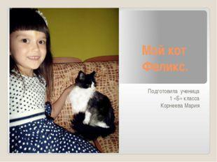 Мой кот Феликс. Подготовила ученица 1 «Б» класса Корнеева Мария