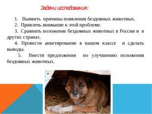 1. Выявить причины появления бездомных животных. 2. Привлечь внимание к этой