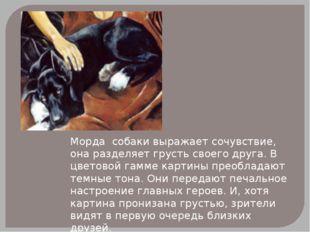 Морда собаки выражает сочувствие, она разделяет грусть своего друга. В цветов