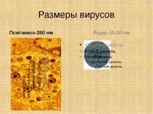 Размеры вирусов Пситаккоз-280 нм Ящур-10-20 нм