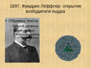 1897, Фридрих Лёффлер открытие возбудителя ящура