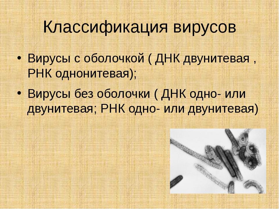 Классификация вирусов Вирусы с оболочкой ( ДНК двунитевая , РНК однонитевая);...
