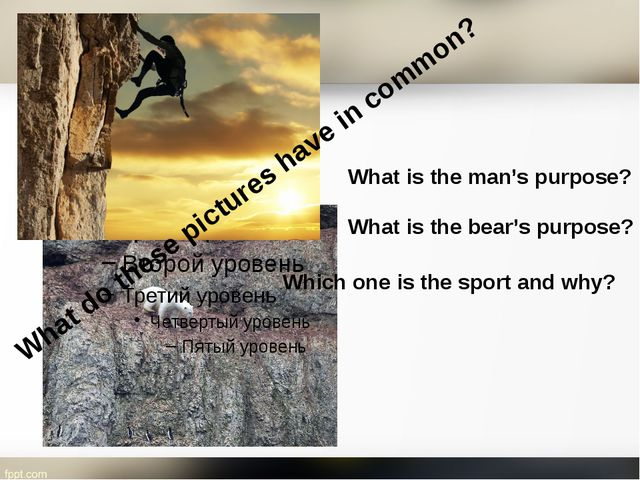 What do these pictures have in common? What is the man's purpose? What is the...