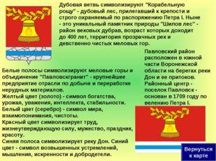 """Белые полосы символизируют меловые горы и объединение """"Павловскгранит"""" - круп"""