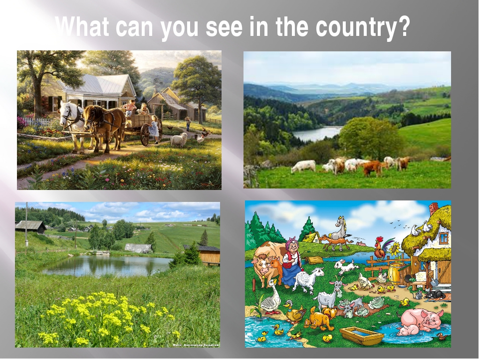 What can you see in the country?