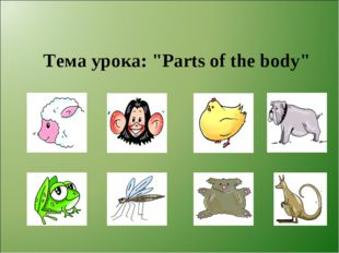 """Тема урока: """"Parts of the body"""""""