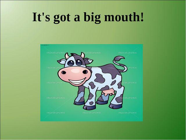 It's got a big mouth!