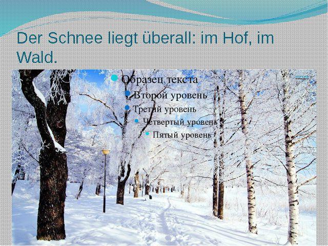 Der Schnee liegt überall: im Hof, im Wald.