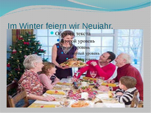 Im Winter feiern wir Neujahr.
