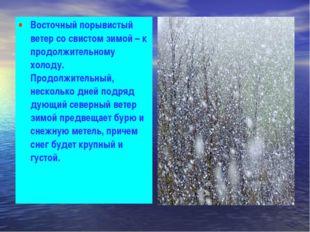 Восточный порывистый ветер со свистом зимой – к продолжительному холоду. Прод