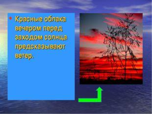 Красные облака вечером перед заходом солнца предсказывают ветер.