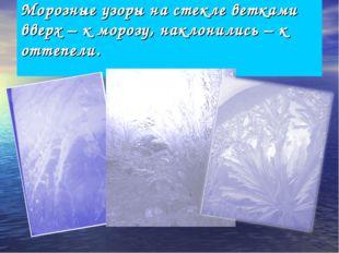 Морозные узоры на стекле ветками вверх – к морозу, наклонились – к оттепели.