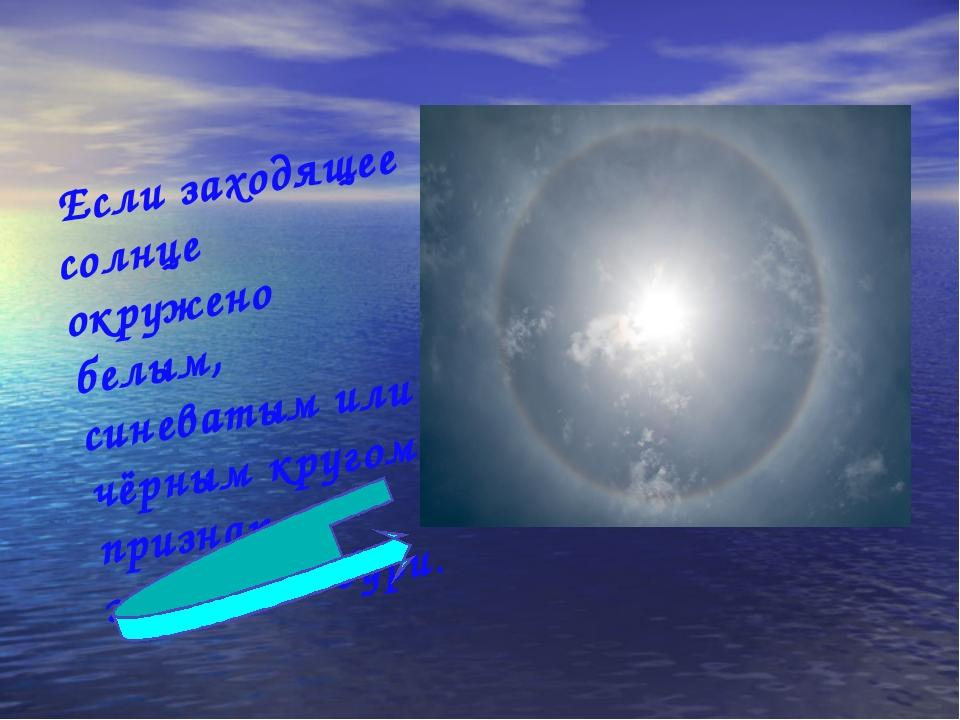 Если заходящее солнце окружено белым, синеватым или чёрным кругом- признак...