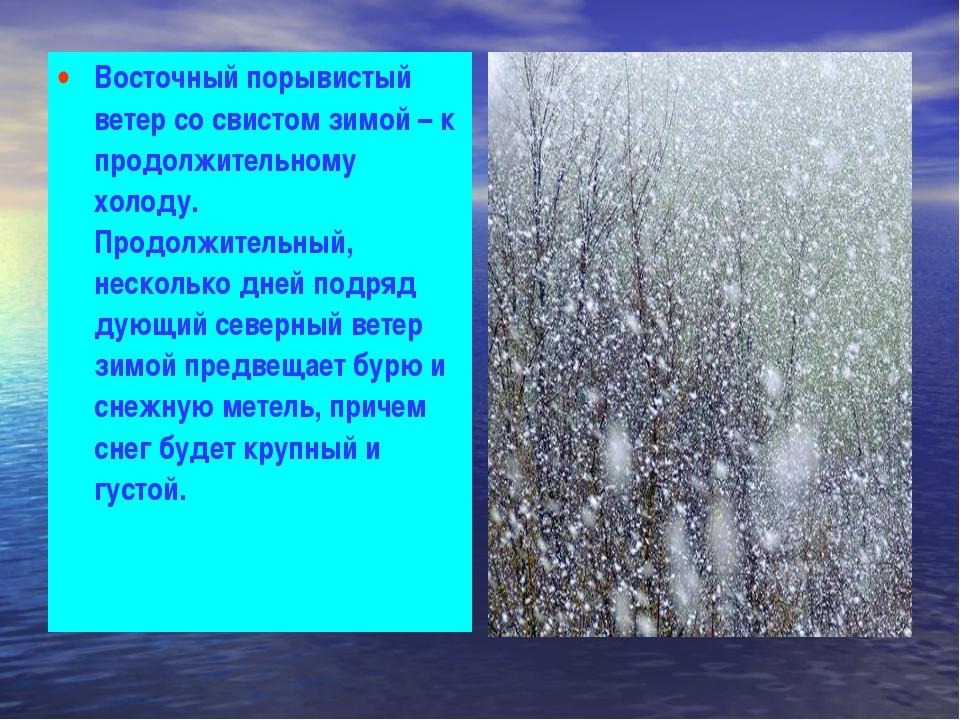Восточный порывистый ветер со свистом зимой – к продолжительному холоду. Прод...