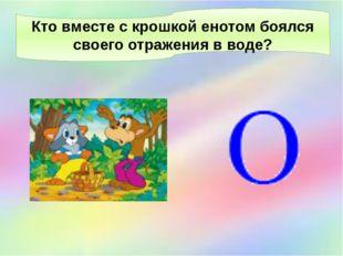 Кто вместе с крошкой енотом боялся своего отражения в воде?