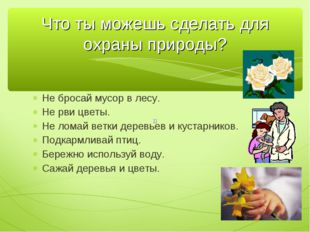 Не бросай мусор в лесу. Не рви цветы. Не ломай ветки деревьев и кустарников.